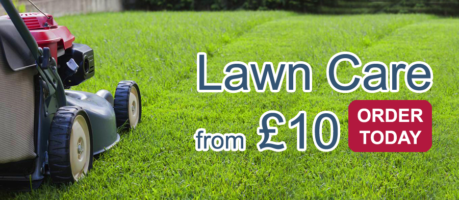 Lawn Care Services North East